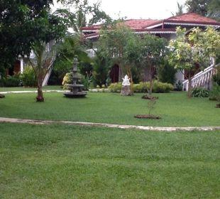 Blick in den Garten Bougain Villa