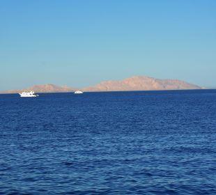 Insel Tiran