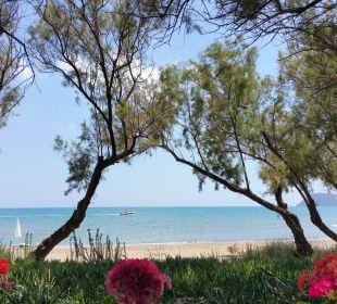 Von der Starndbar Hotel Louis Zante Beach