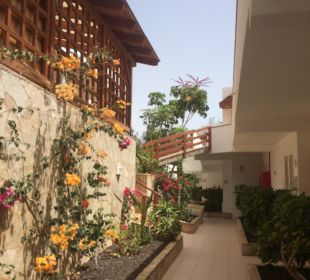 Sonstiges   Marina Playa Suite Hotel