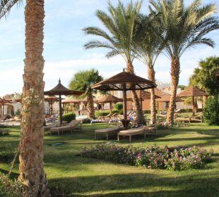 Weihnachtszeit SUNRISE Select Royal Makadi Resort