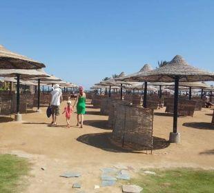 """Weg zum """"Strand"""" - Der Strand besteht aus Treppen!"""