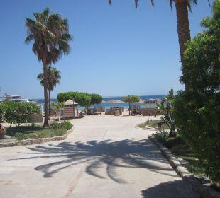 Garten mit Blick zum Strand