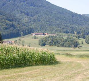 Der Hof von der Straße aus Oberulpointhof