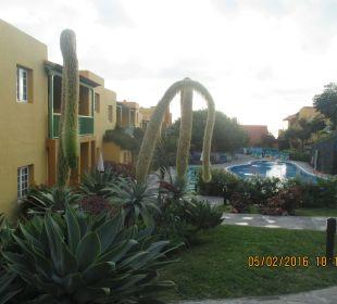 Hotelanlage Apartamentos La Caleta