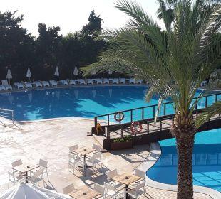 Schöner Pool mit Brücke Hotel Club Kastalia