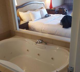 Bad Hotel Hilton Niagara Falls / Fallsview