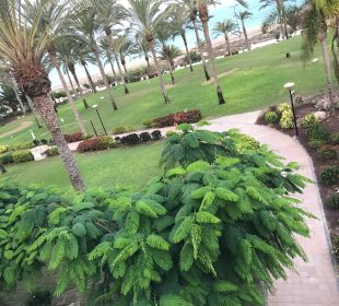 Gartenanlage SBH Hotel Costa Calma Palace