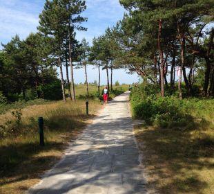 Zugang zum Strand Strandhotel Fischland