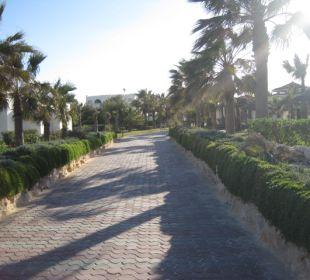 Gartenanlage TUI MAGIC LIFE Penelope Beach