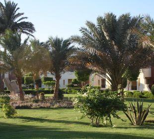 Grünanlage SUNRISE Select Royal Makadi Resort