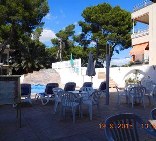 Poolanlage Hotel Palma Playa - Cactus