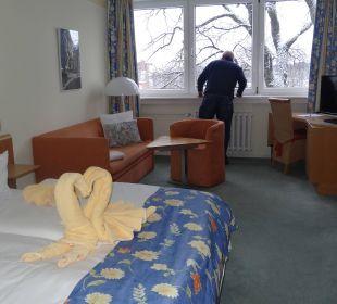 Schwäne - nicht nur im Meer Hotel Wald und See