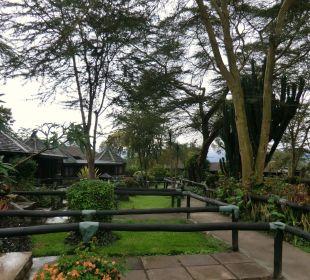 Lodge- gut in die Landschaft eingepaßt Hotel Lake Nakuru Lodge