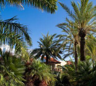 Garten Hotel Hacienda San Jorge