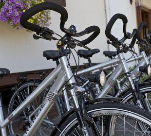 Fahrrad Hotel Alex