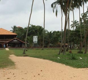 Weg zum Strand Wunderbar Beach Club Hotel