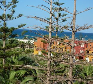 Blick vom Balkon,2 tote Bäume Vantaris Beach Hotel