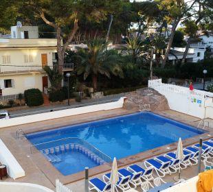 Mini-Pool Hotel Palma Playa - Cactus