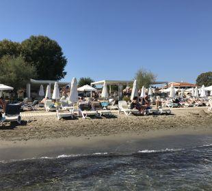 Strand Mayor Capo Di Corfu
