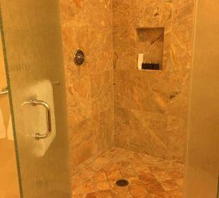 Die Dusche reicht leicht für 2! Hotel Trump International