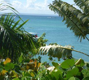 Aussicht vom Zimmer und zum Strand Luxury Bahia Principe Cayo Levantado Don Pablo Collection
