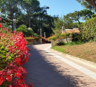 Tolle Bepflanzung Park Hotel Marinetta