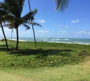 Blick auf den Strand/Meer IBEROSTAR Hotel Bahia