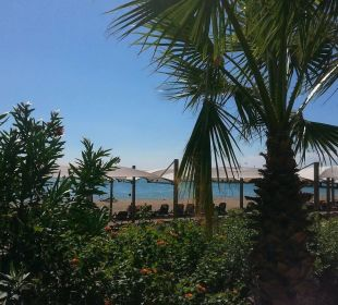 Aussicht zum Strand Bellis Deluxe Hotel