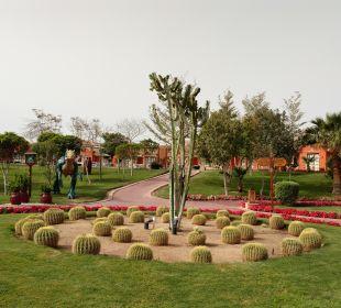 Gartenanlage Jungle Aqua Park