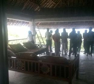 Besichtigung von Veranstaltern auf unserem Balkon Temple Point Resort