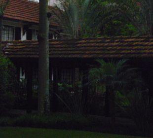 Garten mit überdachten Wege Hotel Southern Sun Mayfair