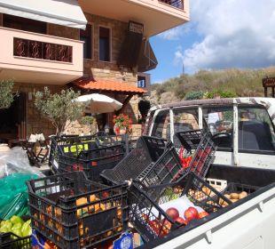 Der Gemüsewagen hält direkt vorm Hotel Apollon Xenonas Apparthotel