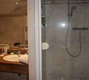 Dusche im Bad Ringhotel Zum Stein