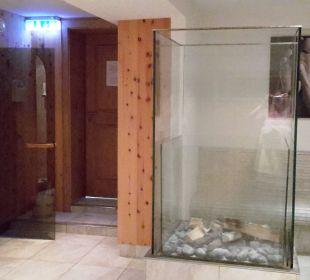 Saunabereich Hotel Sonnblick