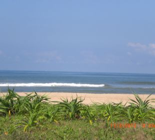 Ausblick von der Strandliege aus Wunderbar Beach Club Hotel
