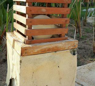 Gartenanlage Stella Di Mare Beach Resort & Spa Makadi Bay