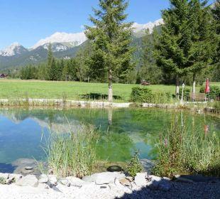 Naturschwimmteich am Hotel Alpenhotel Karwendel