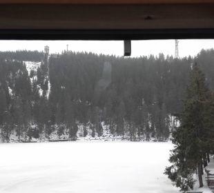 Verschmierte Scheiben Berghotel Mummelsee