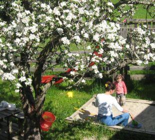 Garten Apparthotel Maier