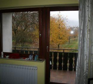 Zimmer mit Balkon Faxe Schwarzwälder Hof Waldulm