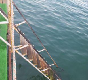 Kinderfreundliche Leiter in das Meer