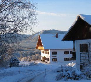 Mit den Alpen auf Augenhöhe Biohof Rechenmacher