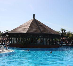 Blick auf die Pool Bar La Palma Princess