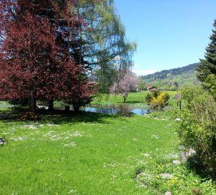 Gartenausschnitt mit unserem Weiher im Frühling Naturgesund Haus Viktoria
