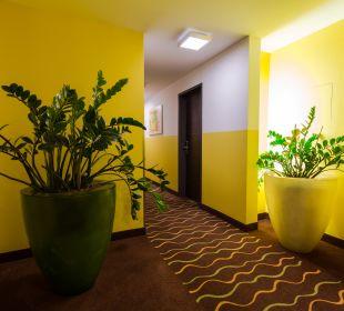 Sonstiges Hotel Arooma