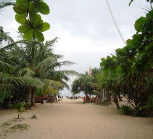 Strand Amal Villa