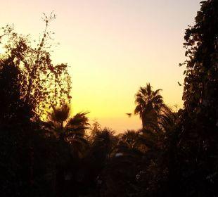Exotische Bepflanzung Hotel La Palma Jardin