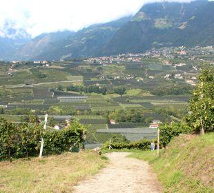 Weinbergbegehung Genusshotel Der Weinmesser
