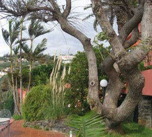 Vom Wind zerzaust Villa Opuntia